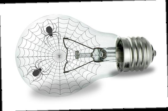 蜘蛛がたくさん出てくる夢占い