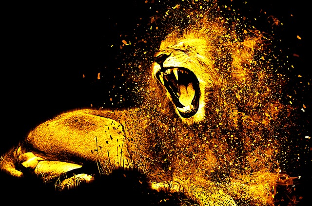 ライオンに襲われる夢占い