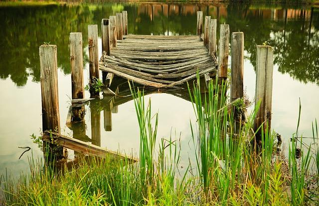 沼に沈む夢