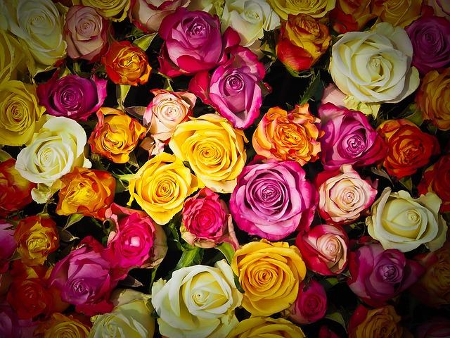 花をもらう(贈られる)夢