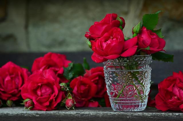 赤い花の夢占い