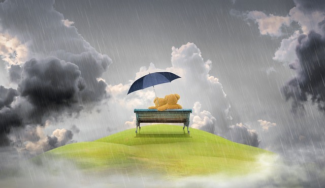 傘をさしてもらう夢