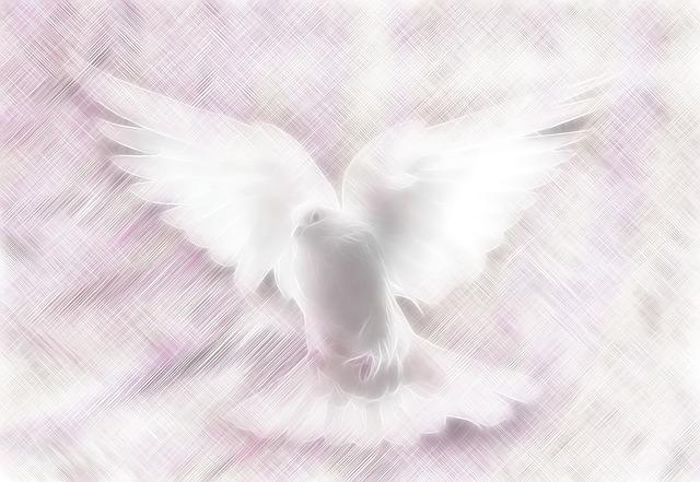 白い鳩の夢占い