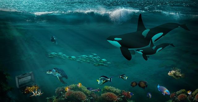 水槽の中に熱帯魚や魚がいる夢の意味は、思考の流れをあらわす