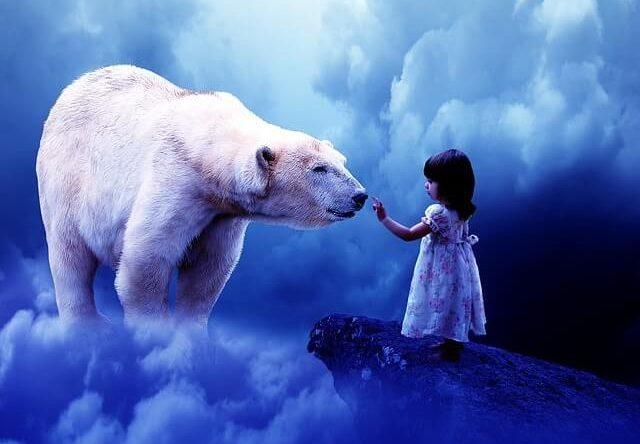 大きな熊に遭う(遭遇する)夢占い